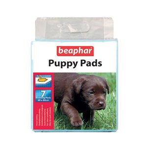 Puppy Pads and Aids